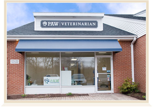 Progressive Animal Wellness Location