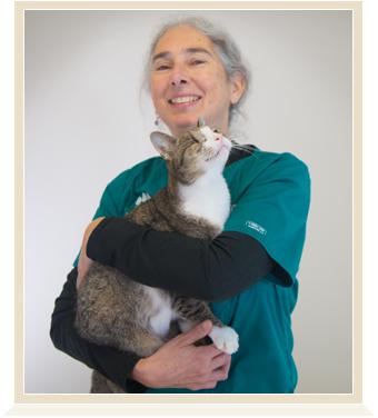 Avon, CT Animal Hospital  USDA Accredited Veterinary